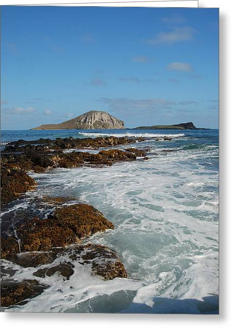 Kaupo Beach Greeting Card by Michael Peychich