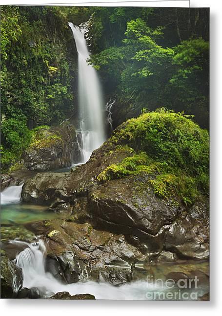 Kawazu Waterfall Trail, Izu Peninsula, Japan Greeting Card