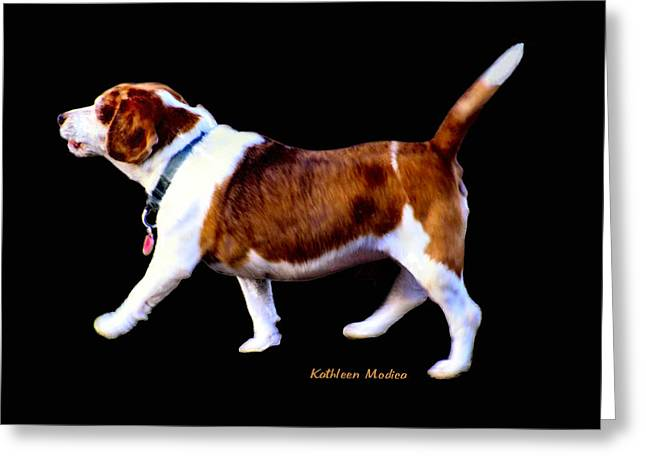 Greeting Card featuring the photograph Kc In Motion by KLM Kathel