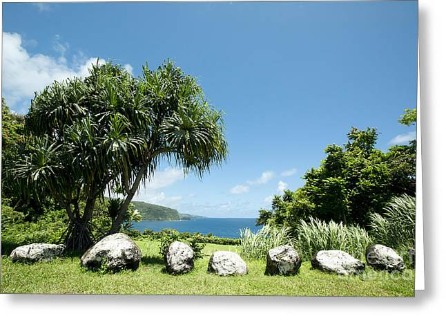Keanae Mahama Lauhala And The Pacific Ocean Nuaailua Bay Mokuholua Maui Hawaii Greeting Card by Sharon Mau