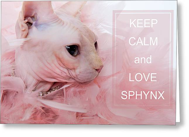 Keep Calm And Love Sphynx Cat Greeting Card by Zina Zinchik
