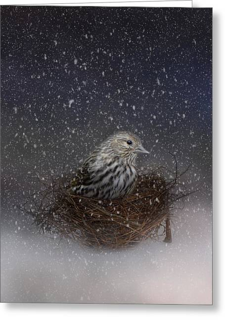 Keeping Warm In My Nest Greeting Card by Jai Johnson