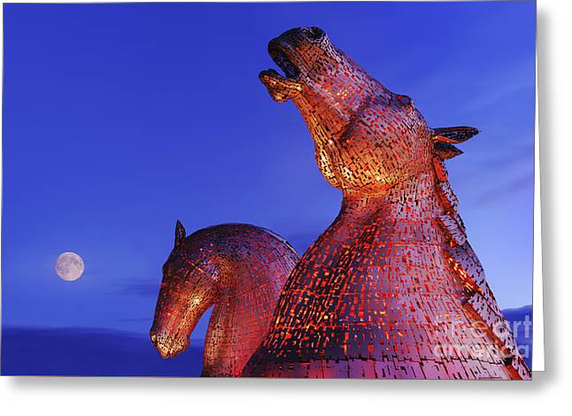 Kelpies Moonrise Greeting Card