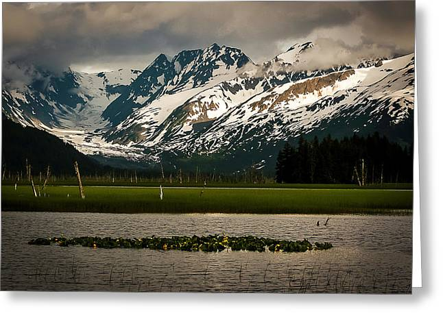 Kenai Peninsula Greeting Card