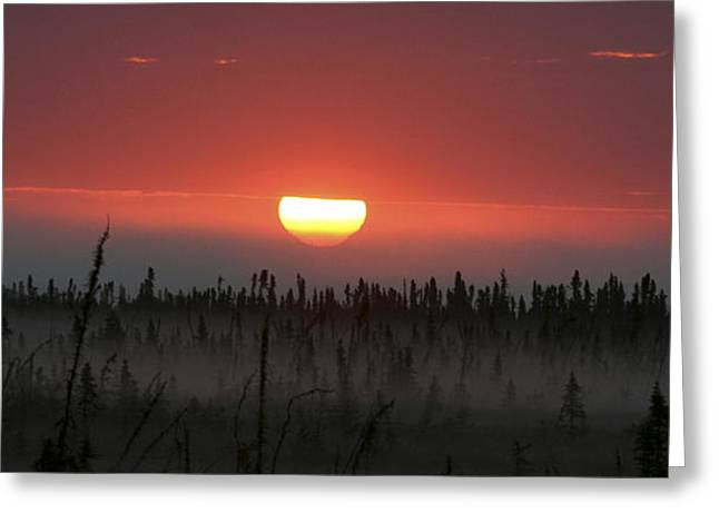 Kenai Peninsula Early Sunrise Greeting Card by Mary Gaines