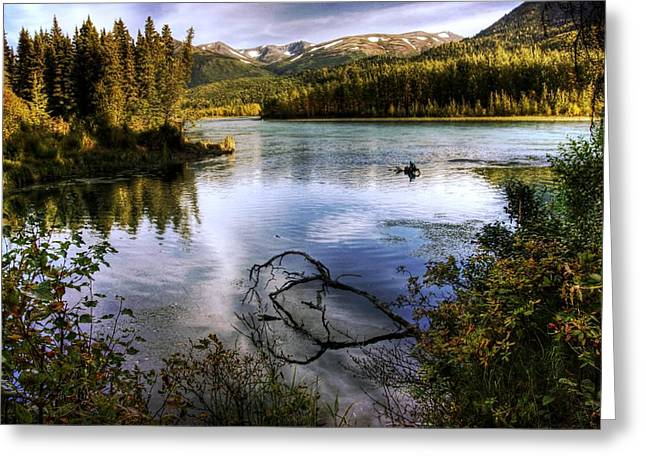 Kenai River In Fall Greeting Card