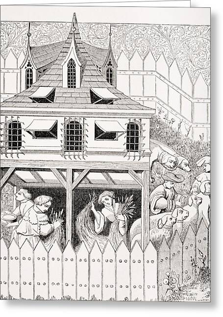 Kennel In Which Dogs Should Live And Greeting Card