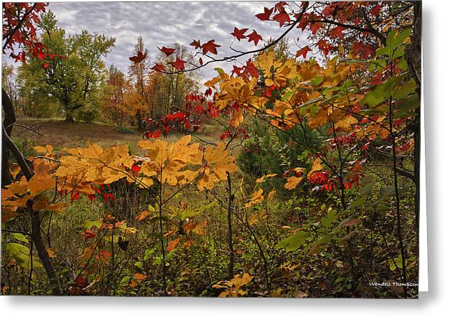 Kentucky Fall Colors Greeting Card by Wendell Thompson
