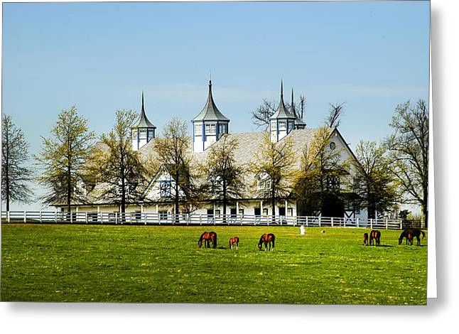 Revised Kentucky Horse Barn Hotel 2 Greeting Card