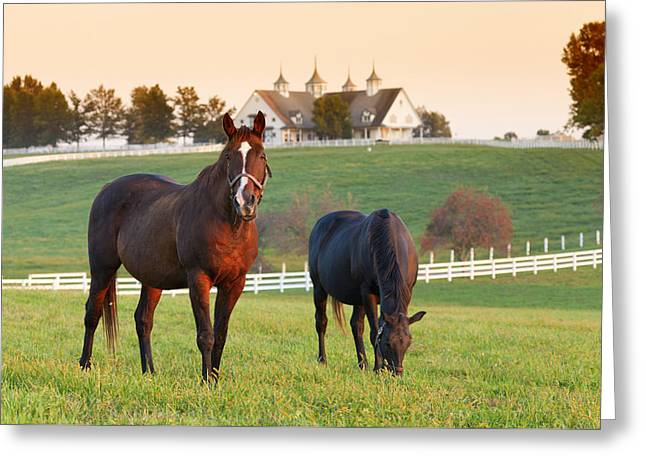 Kentucky Pride Greeting Card