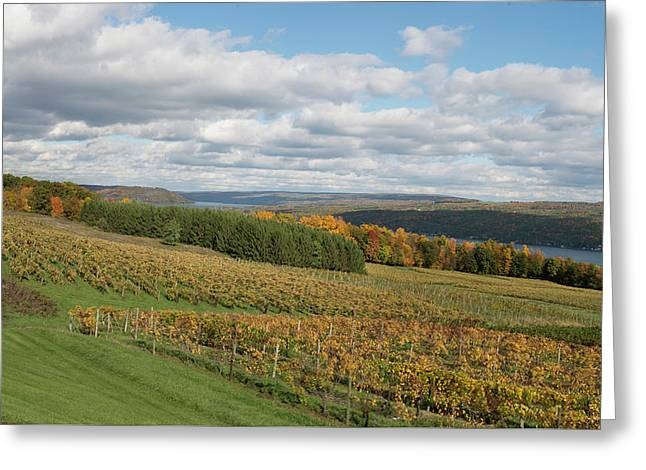 Greeting Card featuring the photograph Keuka In Autumn by Joshua House