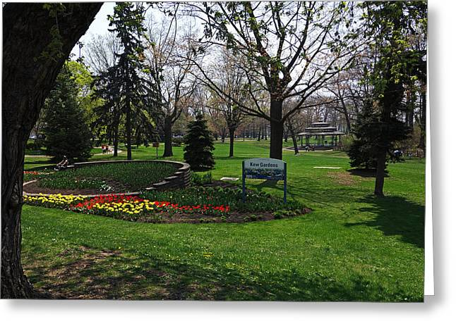 Kew Park Tulips Toronto Greeting Card by Toby McGuire