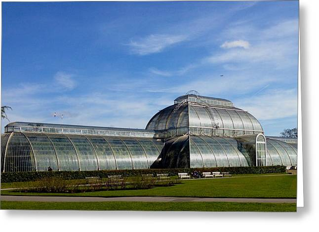 Kew's Palm House Greeting Card by David French