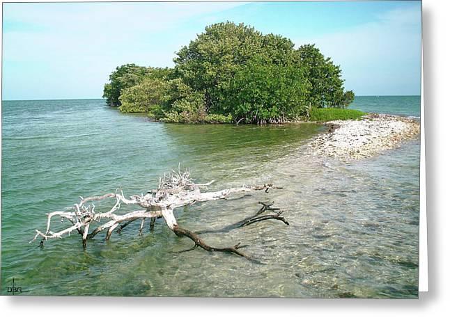 Key Largo Out Island Greeting Card