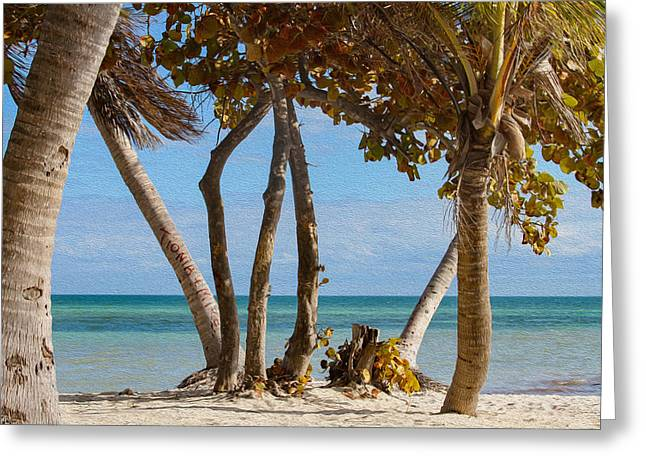 Key West Afternoon Greeting Card