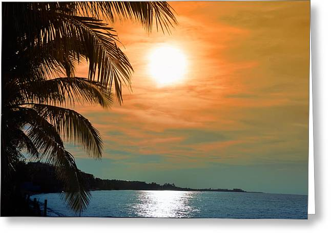 Bill Cannon Greeting Cards - Key West Florida Greeting Card by Bill Cannon