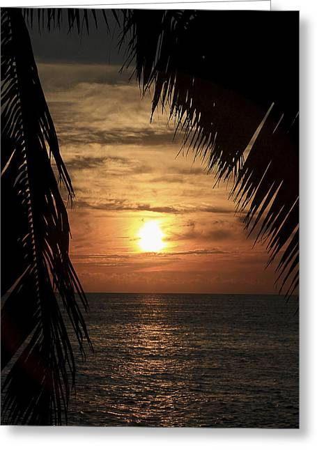 Key West Palm Sunset 2 Greeting Card