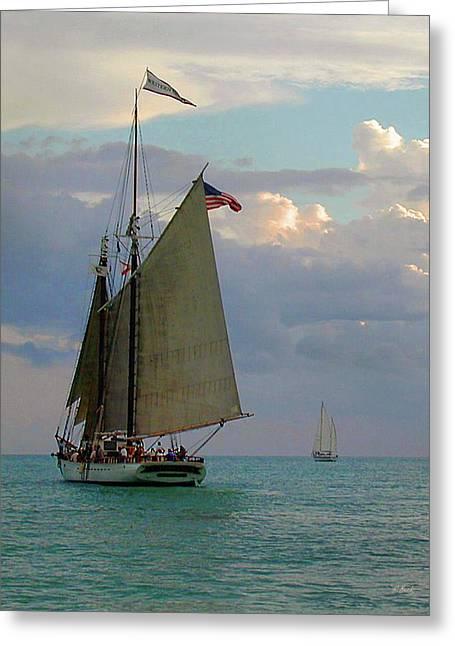 Key West Sail Greeting Card by Gordon Beck