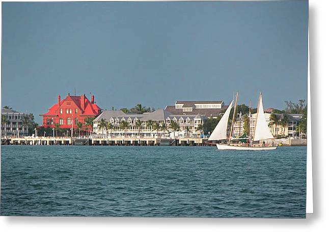 Key West Shoreline Greeting Card by Frank Mari