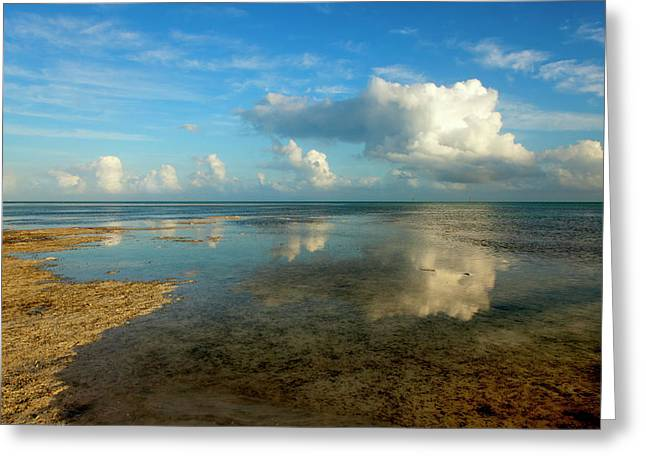 Keys Reflections Greeting Card by Mike  Dawson