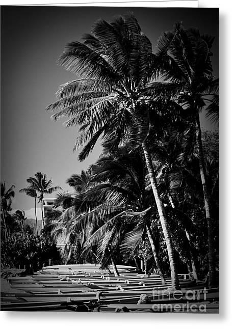 Kihei Sugar Beach Maui Hawaii Greeting Card