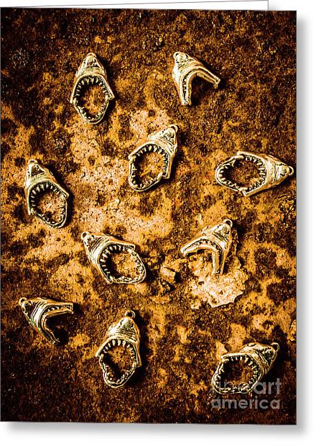 Killer Shark Jaws  Greeting Card by Jorgo Photography - Wall Art Gallery