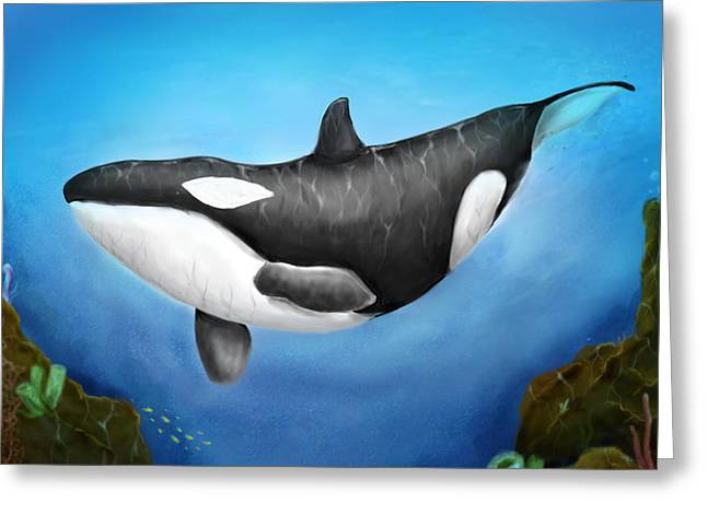 Killer Whale Greeting Card by Christian Lopez