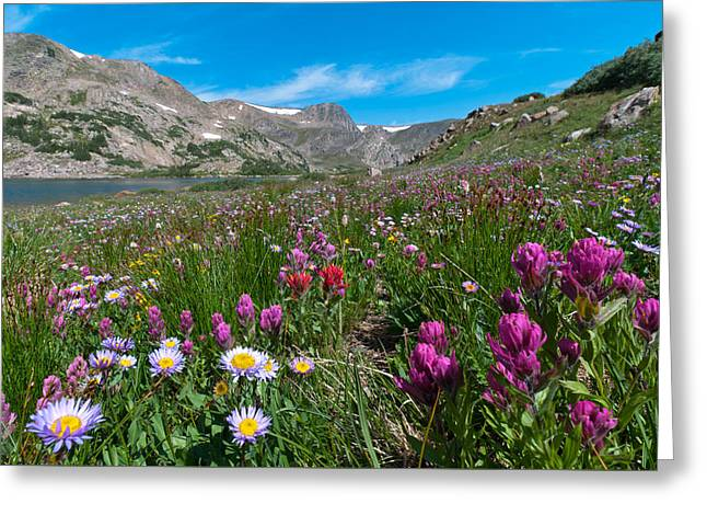 Greeting Card featuring the photograph King Lake Summer Landscape by Cascade Colors