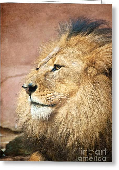King Of The Jungle Greeting Card by Bob and Nancy Kendrick