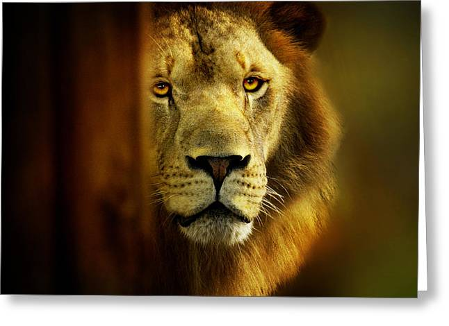 King Of The Jungle Greeting Card by Christina Skibicki