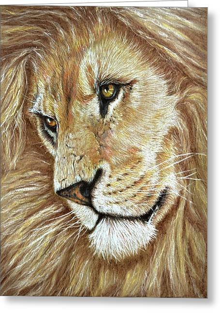Greeting Card featuring the drawing King Of The Jungle by Heidi Kriel