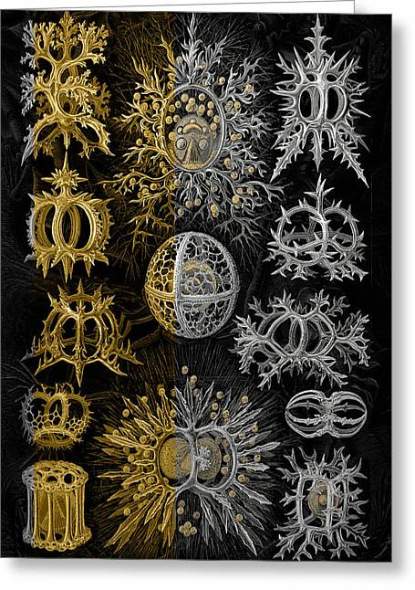 Kingdom Of Silver Single-celled Organisms  Greeting Card by Serge Averbukh