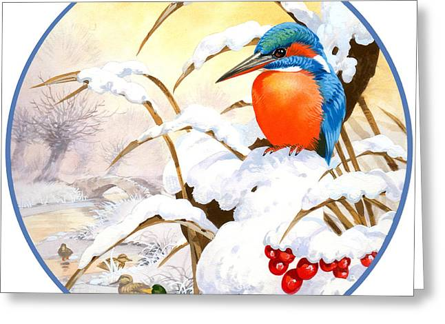 Kingfisher Plate Greeting Card