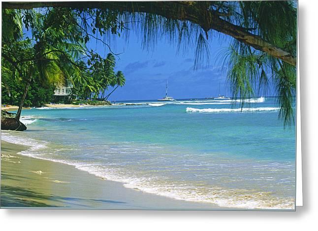 King's Beach, Barbados Greeting Card