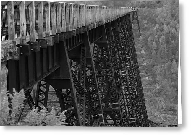 Kinzua Skywalk Greeting Card