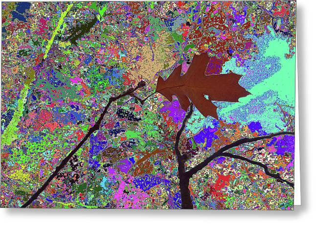 Kiss To The Sky In Fall Greeting Card by Kenneth James