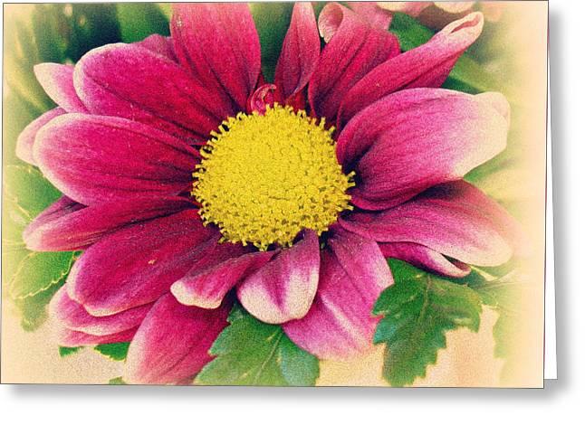 Kiss Yesterday Goodbye Greeting Card by Kathy Bucari
