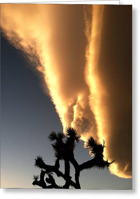 Kissed By A Cloud Greeting Card by John Smolinski