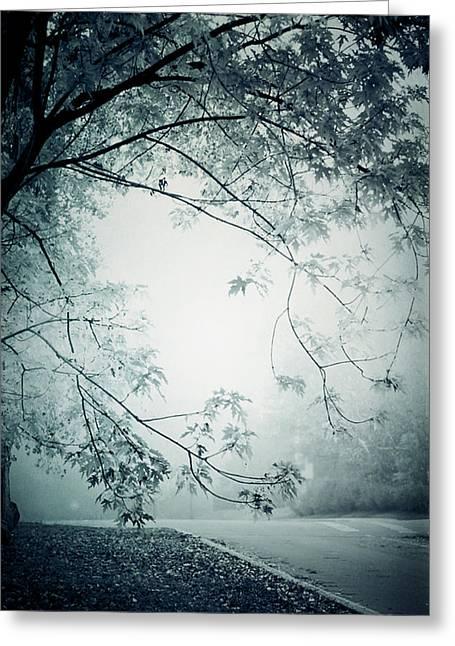 Kissed By Mist Greeting Card by Maggie Terlecki