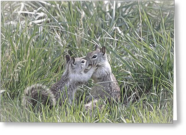 Kisses In The Grass Greeting Card by Donna Kennedy