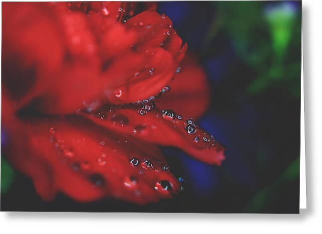 Kisses In The Rain Greeting Card by Laurie Search