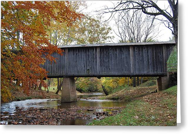 Greeting Card featuring the photograph Kissing Bridge At Fall by Eric Liller
