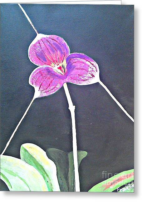 Kite Orchid Greeting Card
