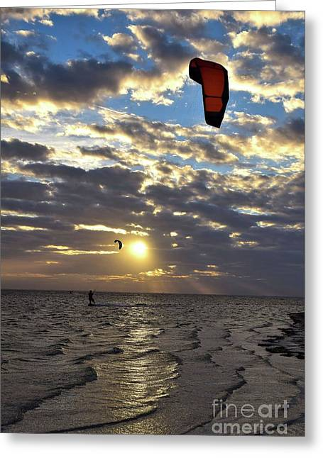 Kite Surfer On Tampa Bay 12168 Greeting Card by Anna Gibson