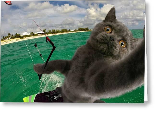 Kite Surfing Cat Selfie Greeting Card
