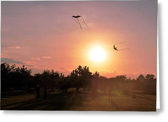 Kites Flying In Park Greeting Card