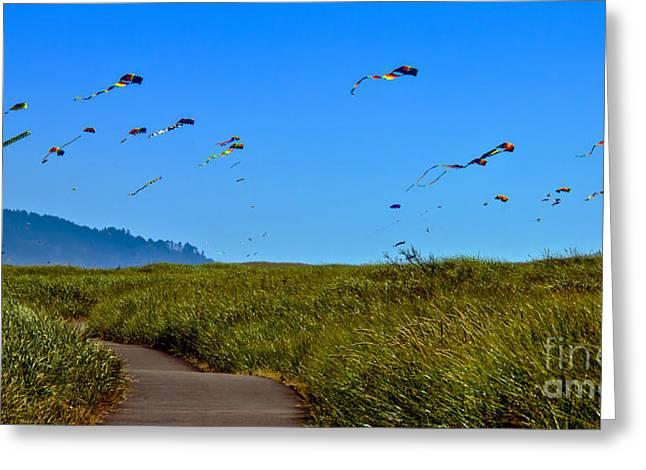 Kites Greeting Card by Robert Bales