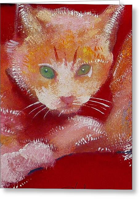 Kitten Greeting Card by Charles Stuart