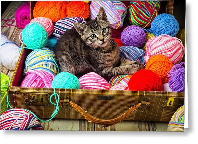 Kitten In Suitcase With Yarn Greeting Card