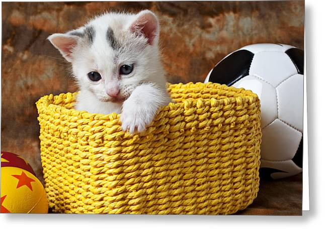 Cuddly Photographs Greeting Cards - Kitten in yellow basket Greeting Card by Garry Gay